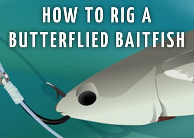 TACKLE TWEAK — How To Rig A Butterflied Baitfish