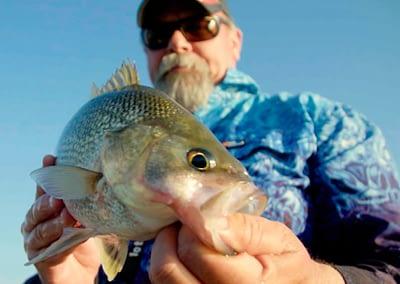 Bass — Lake Somerset, Queensland : A Fisherman's Life