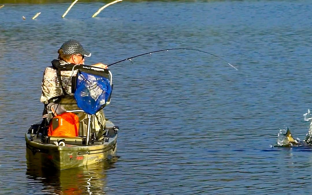 Bream In The Snags : A Fisherman's Life