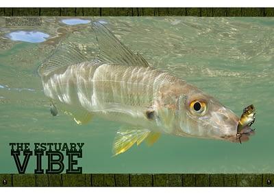 THE ESTUARY VIBE : FISHLIFE MAGAZINE #5 ARCHIVE