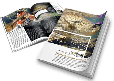 WILD ABOUT BASS — finding & catching Aussie bass in rivers